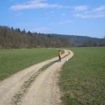 Radensko polje – poceni nedeljski izlet v okolici Grosuplja