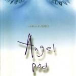 Knjiga Te nagovori: Angel pod masko