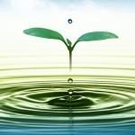 Voda: količina (po)pitja