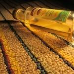 Iz Maroka nikakor brez arganovega olja