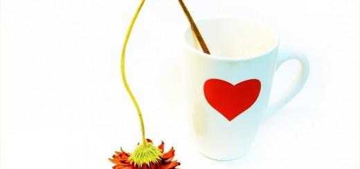 valentinova-strta-srca-1