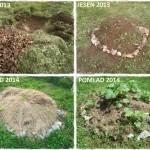 S plastnatim kompostiranjem do rodovitnih tal