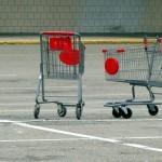 Moj način nakupovanja živil