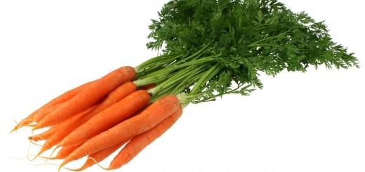korenje, zdravilna zelenjava