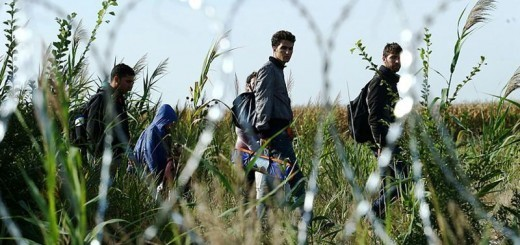 Moj pogled na begunsko krizo