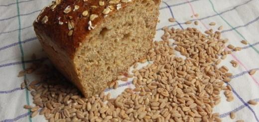 pira - pirino zrnje in pirin kruh