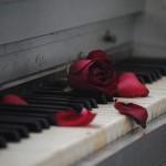 Ko srce ostane samo – kako naprej?