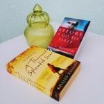 Bralni kotiček – kaj berem in priporočam v branje (št. 3)
