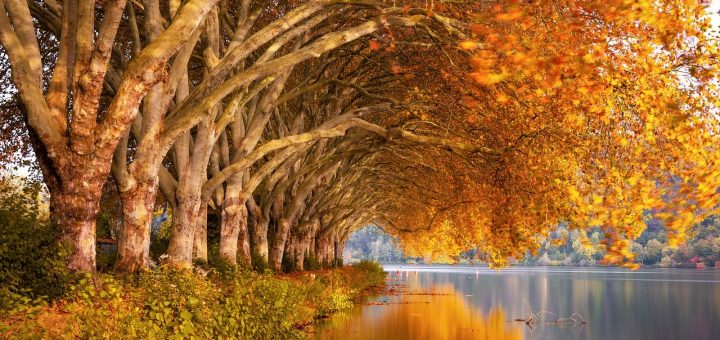 najlepše misli o jeseni