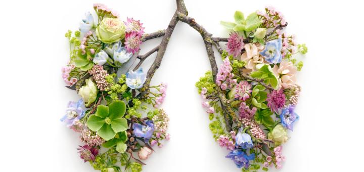 Naša pljuča uravnavajo naše počutje